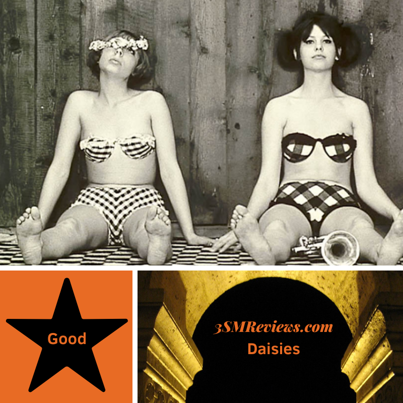 A picture from the film Daisies of Jitka Cerhová and Ivana Karbanová wearing bikinis and sitting against a wall. A star with text: Good. An arch with text: 3SMReviews.com. Daisies.